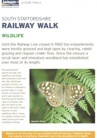 ss-railway-walk